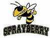 Sprayberry HS Sport Fundraisers this weekend