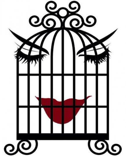 facebook-friday-freebie-enter-to-win-a-two-tickets-to-dinner-and-a-play-at-the-vineyard-cafe-to-see-birds-of-a-feather-aka-the-bird-cage-84.jpg