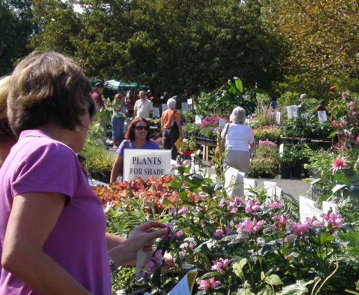 Master Gardeners Hold Garden Fair Plant Sale This Weekend East Cobber