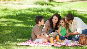 EAST COBBER Frugal FunMom Field Trip of the Day for Tuesday, July 18: Have an Indoor Picnic at Mountain View Library!