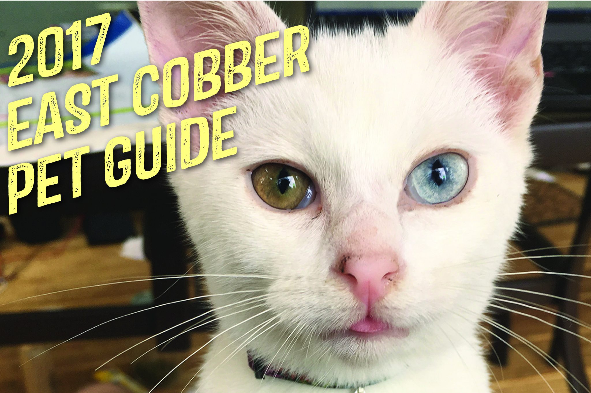 EAST COBBER is Proud to Announce Its 11th Annual Pet Guide 4