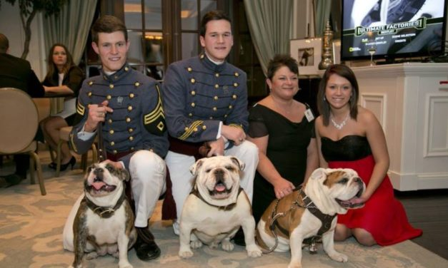 Bully Ball Raises Funds for English Bulldogs