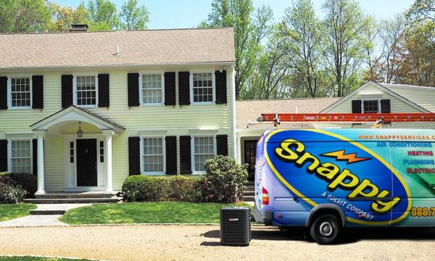 *Facebook Friday Freebie! Enter to Win A Free Spring Tune Up from Snappy Services!