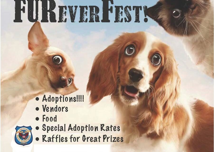 FURever Fest to be Held May 19