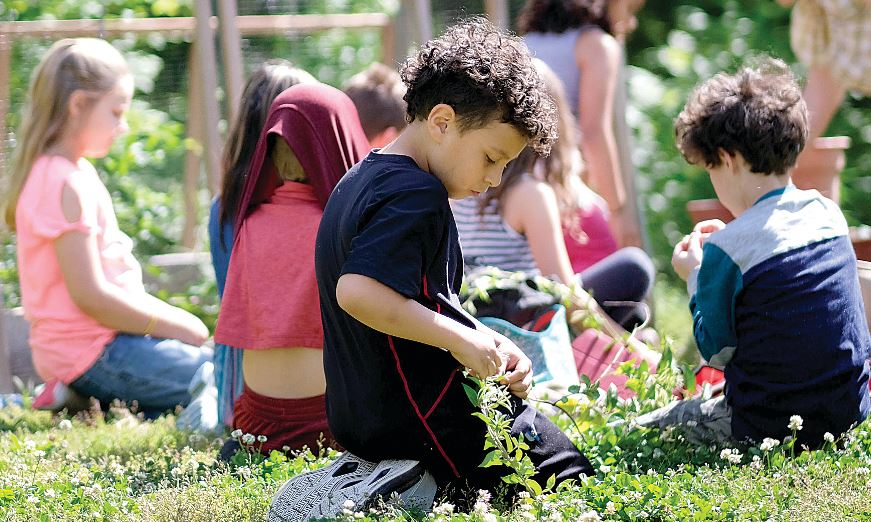 The Garden School Provides Nature-Based Education to Students