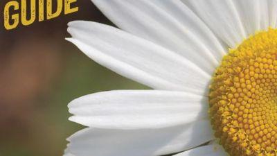 8th-annual-home-garden-guide-2.jpg