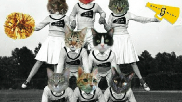 annual-fundraiser-to-benefit-good-mews-2.png