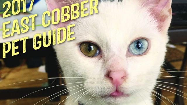 east-cobber-is-proud-to-announce-its-11th-annual-pet-guide-5.jpg