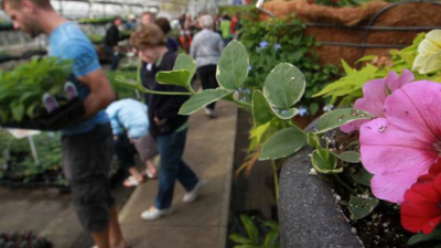 spring-native-plant-sale-at-chattahoochee-nature-center.png
