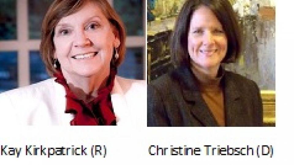 state-senate-race-goes-to-runoff-2.jpg